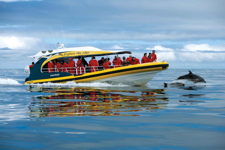 Tasman Island: 3-Hour Wilderness Cruise