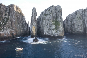 Tasman Peninsula Day Trip with Cruise & Devils from Hobart
