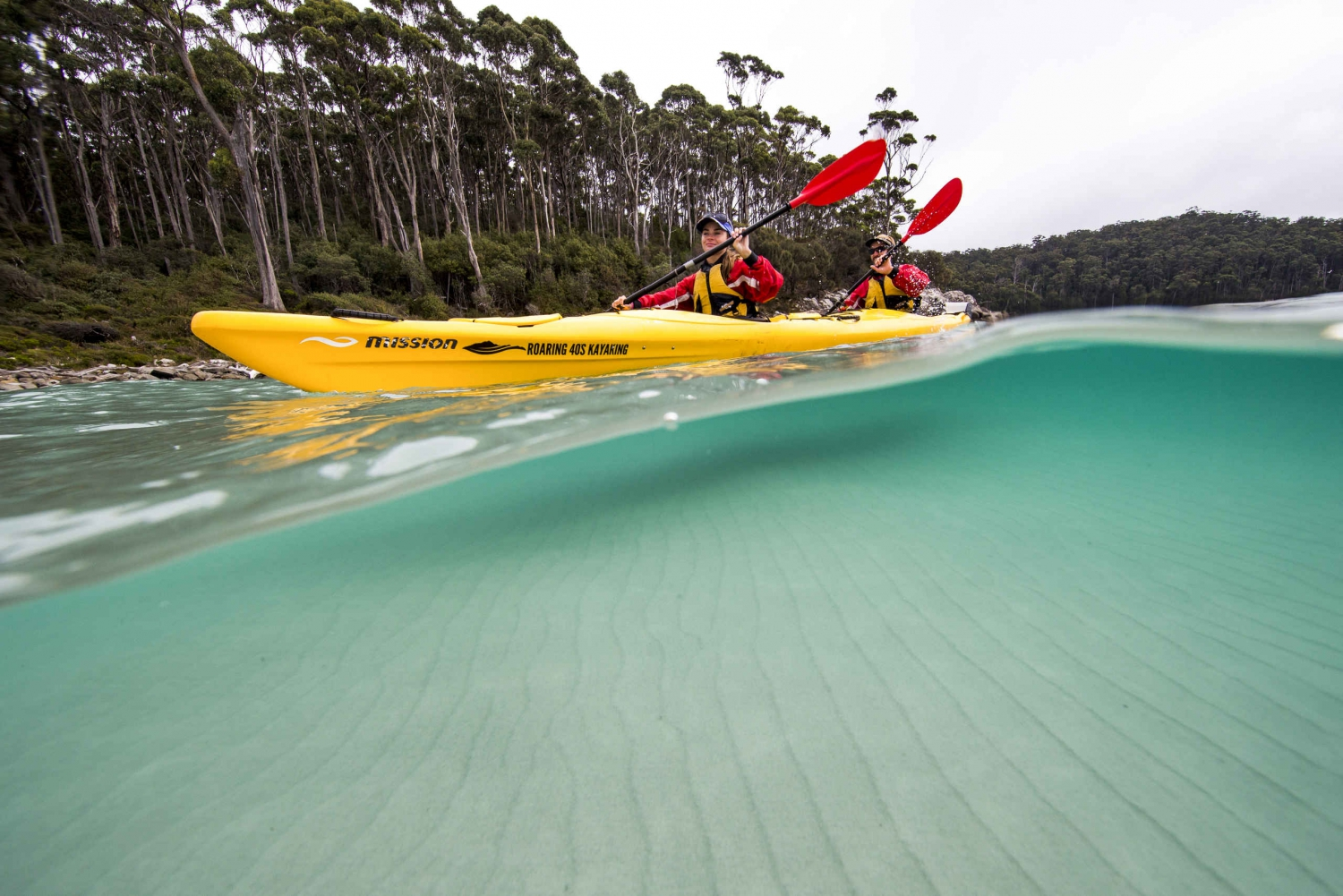 Tasman Peninsula Full-Day Sea Kayak Excursion