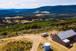 Tasmania: Full-Day Gin & Wine Tasting Tour with Lunch