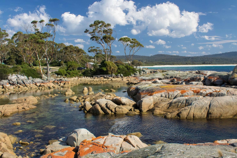 Tasmania North East Voyageur Full Day 4WD Tour