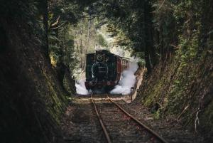 Tasmania: Rack and Gorge Half-Day Tour