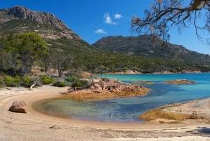 Wineglass Bay & Freycinet National Park Day Trip from Hobart