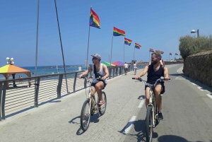 2-Hour City, Park & Beach Easy Bicycle Tour