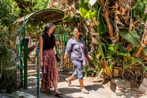 From Tel Aviv: Experience a Communal Kibbutz