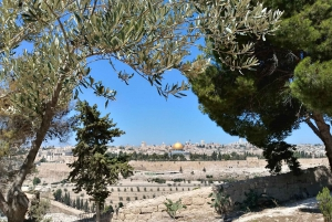 From Tel Aviv: Jerusalem, Dead Sea & Bethlehem Full-Day Tour