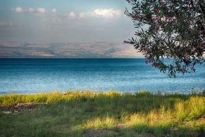 From Tel Aviv: Jordan River, Nazareth, & Sea of Galilee Tour