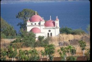 From Tel Aviv, Netanya & Herzliya: Biblical Highlights Tour