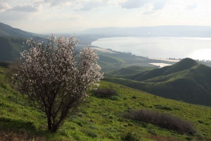 Magdala, Mount of Beatitudes, and Cana Tour