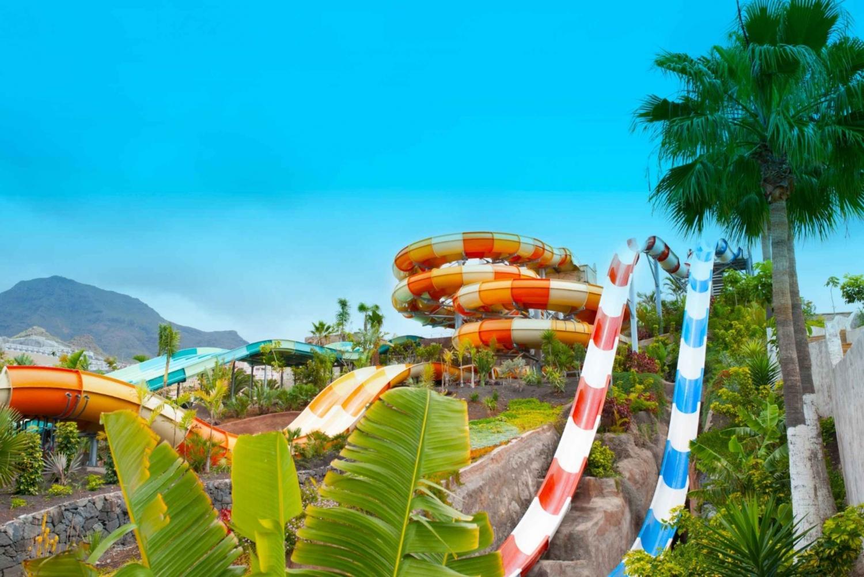 Entrance Ticket to Aqualand Costa Adeje