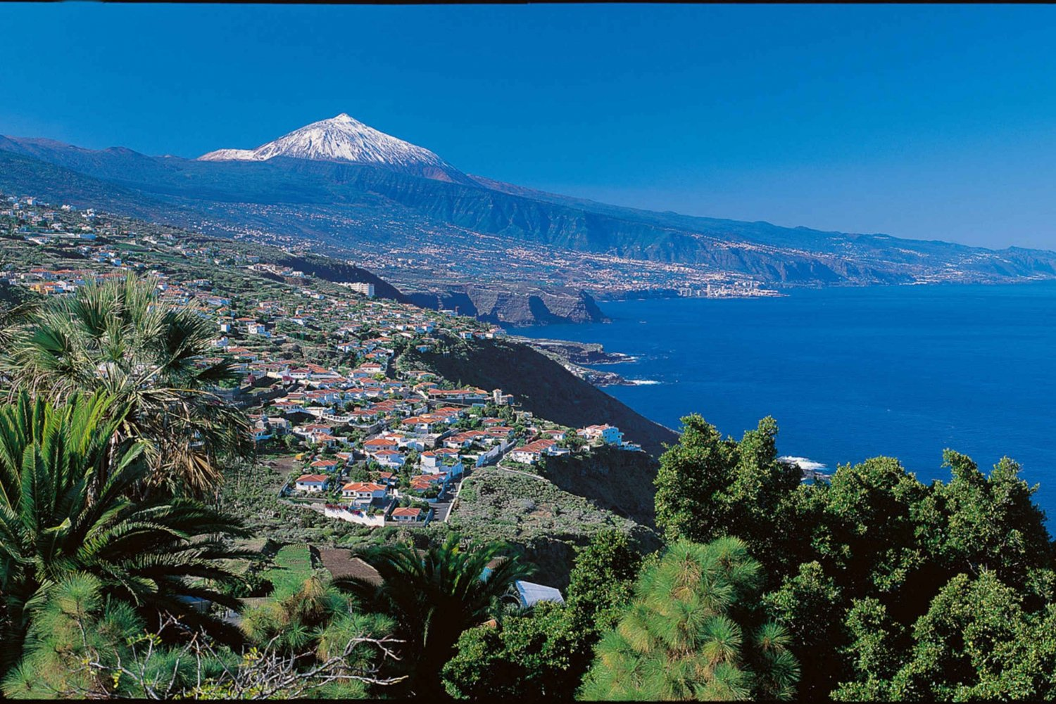 From Gran Canaria: Day Trip to Tenerife