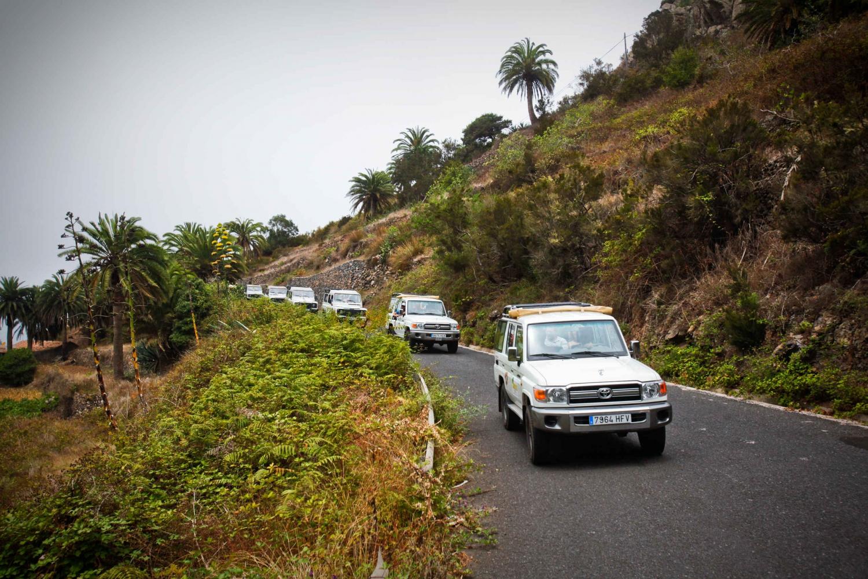 Full-Day Gomera Jeep Safari Excursion from Arona