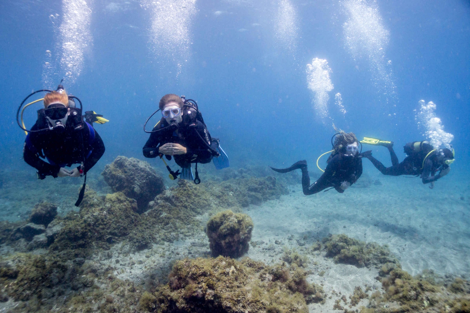 Los Abrigos: 3–Day PADI Open Water Diving Course