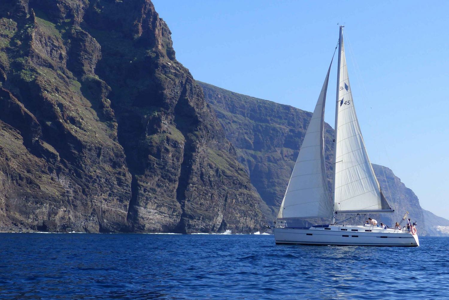 Los Gigantes Whale Watching Cruise by Sail Boat