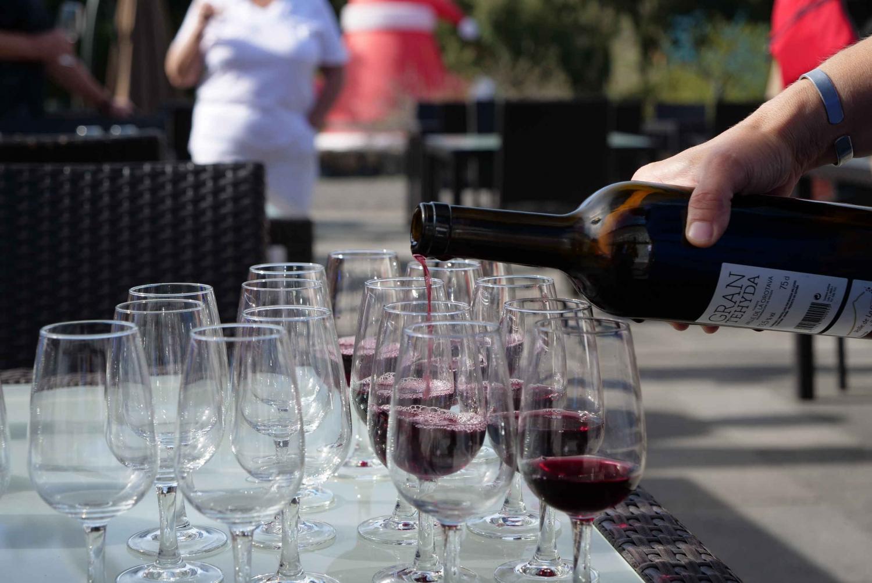 Luxury Hike & Wine Tour in Southern Tenerife