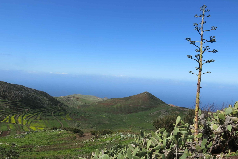 Masca Tour and Teno Mountains & Punta de Teno Hike