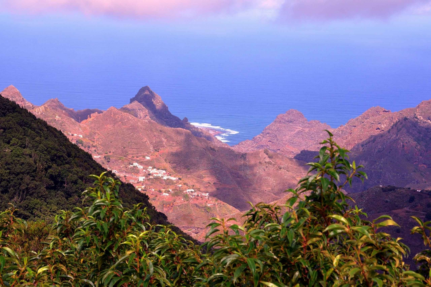 Northern Tenerife with Tapas, Mojo and Wine Tasting