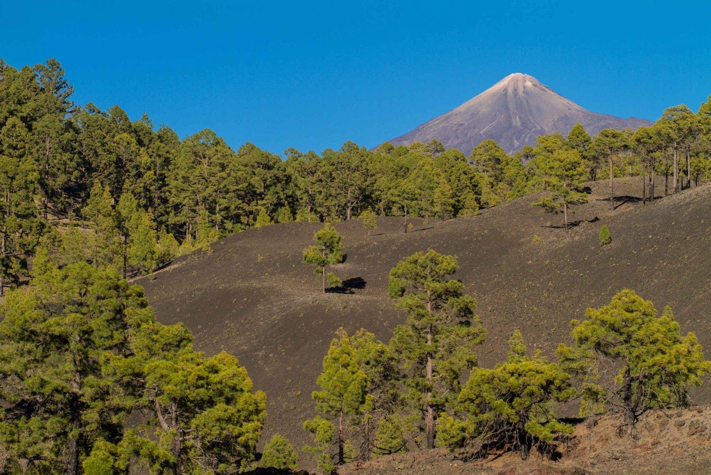 Premium Routes at Mount Teide National Park