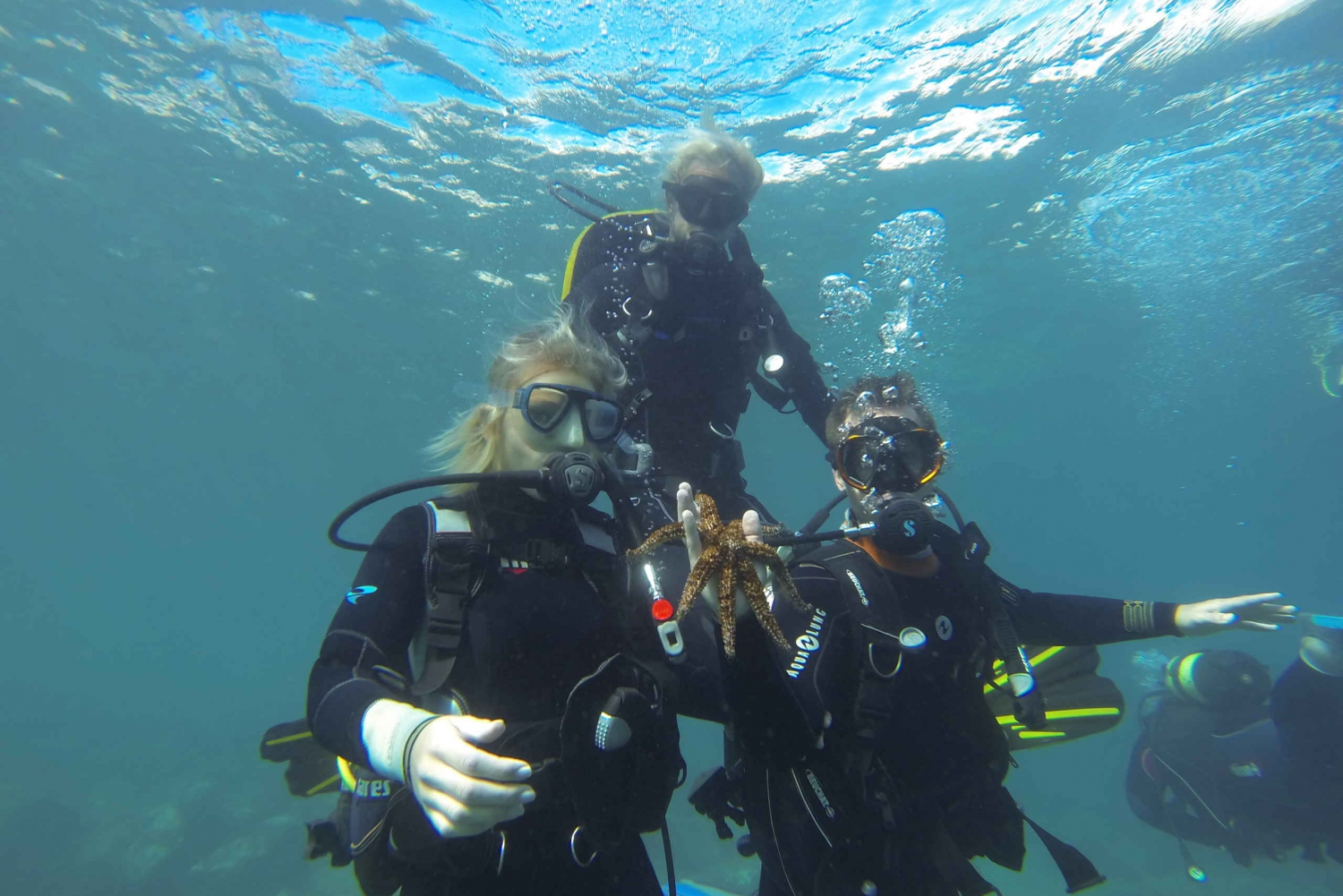 Scuba Dive for Beginners