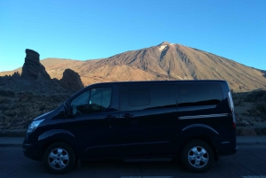 Teide: Private Cruise Ship Tour