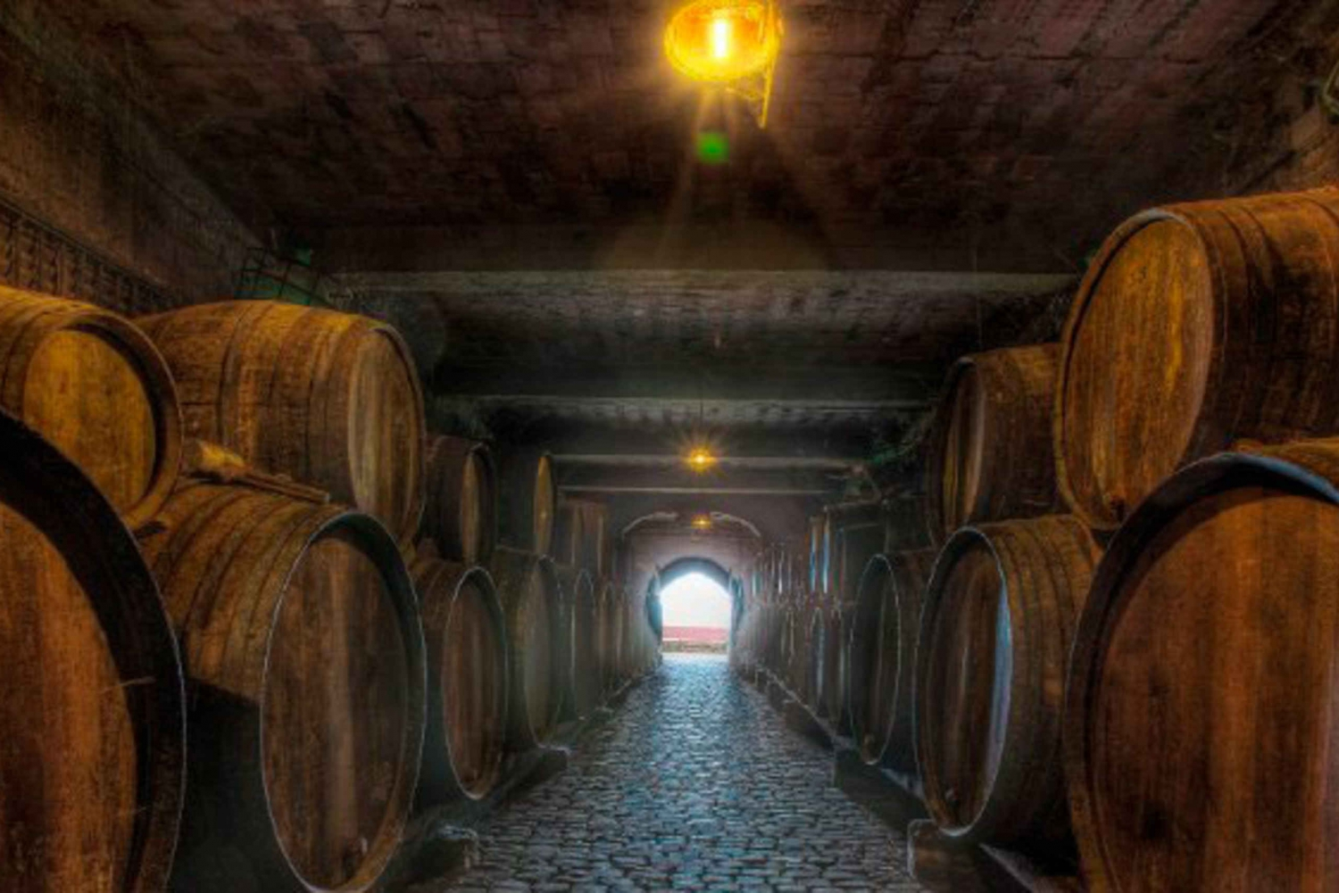 Tenerife Full-Day Gastronomy and Grape Experience