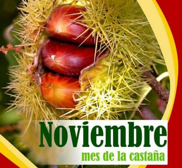 Chestnut Night in Valle San Lorenzo