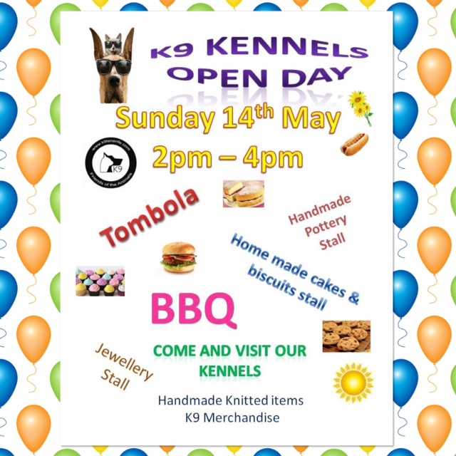 K9 Open Day - Meet The Rescue Animals