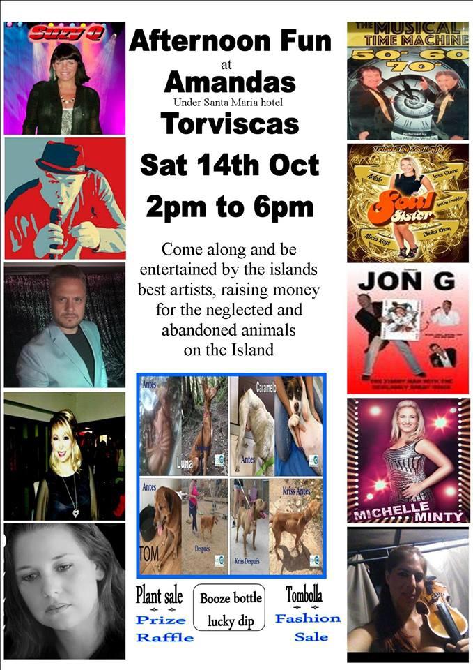 Live Arico P.A.W.S Fundraiser
