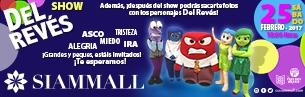 Show del Rvés