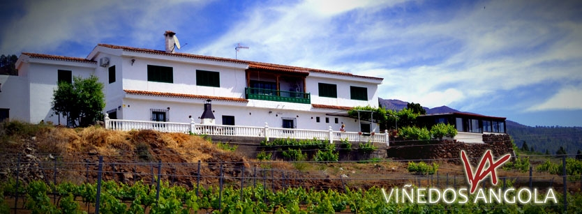 Vilaflor Wine Tours