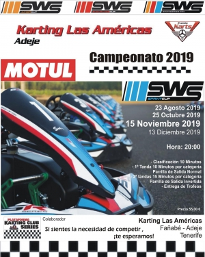 Karting Competition - The New Karting Las Americas