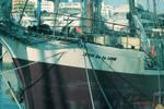 Voyage to La Gomera