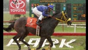 Santa Rosa Horse Racing