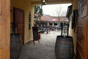 Budapest to Vienna 1-Way Transfer Tour and Wine Tasting
