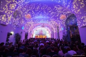 Evening at Schönbrunn Palace: Tour, Dinner, and Concert