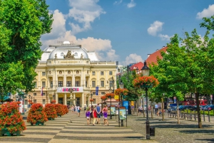 From Vienna: Bratislava City Tour with Food Options