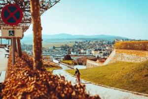 From Vienna: Full-Day Kickbike Tour through Wachau