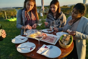 From Vienna: Half-day Countryside Wine Tour with Meal