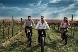 Go Green Eco Tour by Electric Mountain Bike