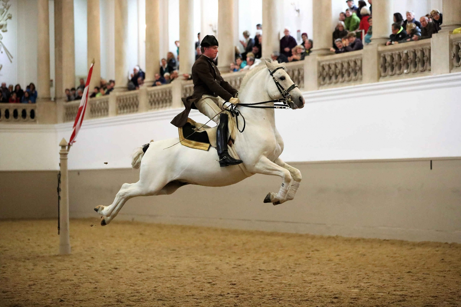 Performance Of The Lipizzans At Spanish Riding School