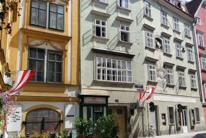 Romantic Old Vienna City Walk and Wine Tasting