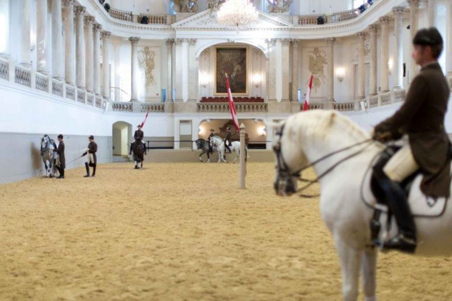 Spanish Riding School Morning Exercise