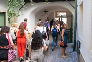 Vienna: 2-hour Behind-the-Scenes Guided Walking Tour