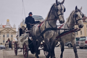 Vienna: 30-Minute Fiaker Ride in the Old Town