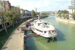 Vienna: 60-Minute Guided E-Bike Tour