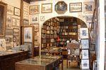 Vienna Antiques - Ingo Nebehay