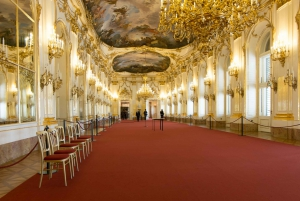 Vienna: Best of in 1-Day Private Guided Tour with Transport