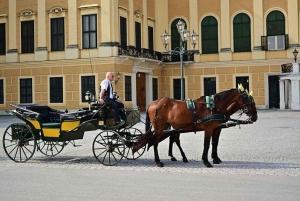 Vienna: Carriage Ride Through Schönbrunn Palace Gardens