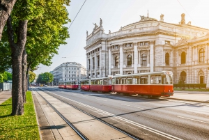 Vienna City Card: Discounts and Public Transport