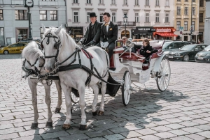 Vienna: Culinary Horse-Drawn Carriage Experience